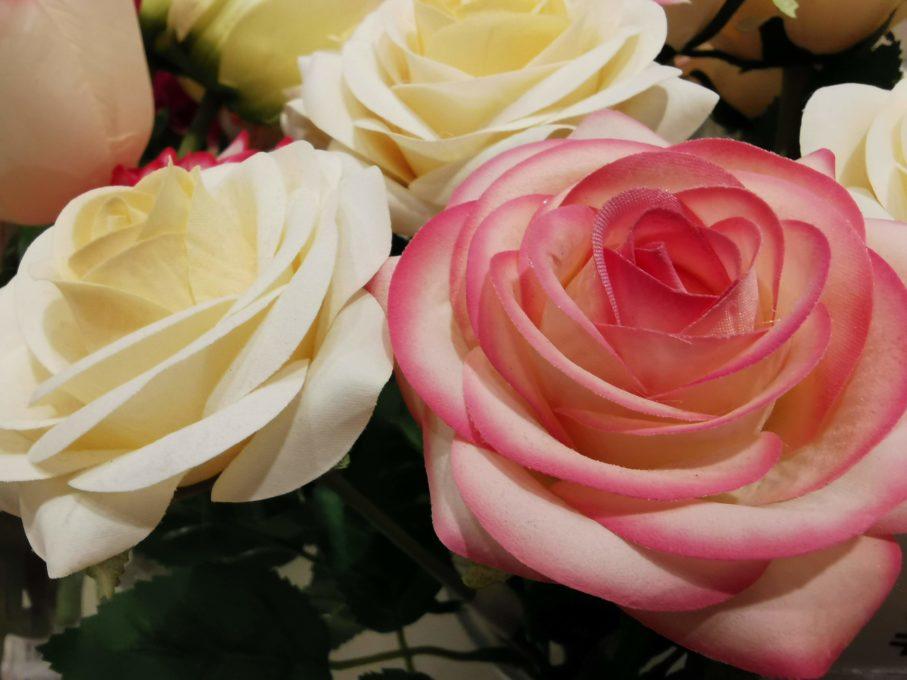 HUAWEI P30でバラを撮影した写真
