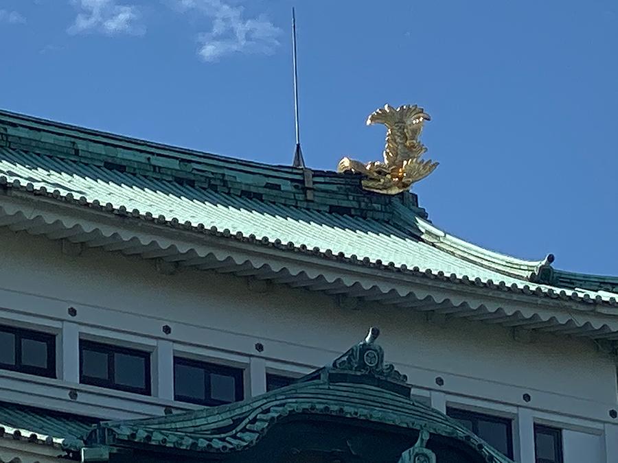 iPhone 11 Pro Maxのデジタルズームで撮影した名古屋城