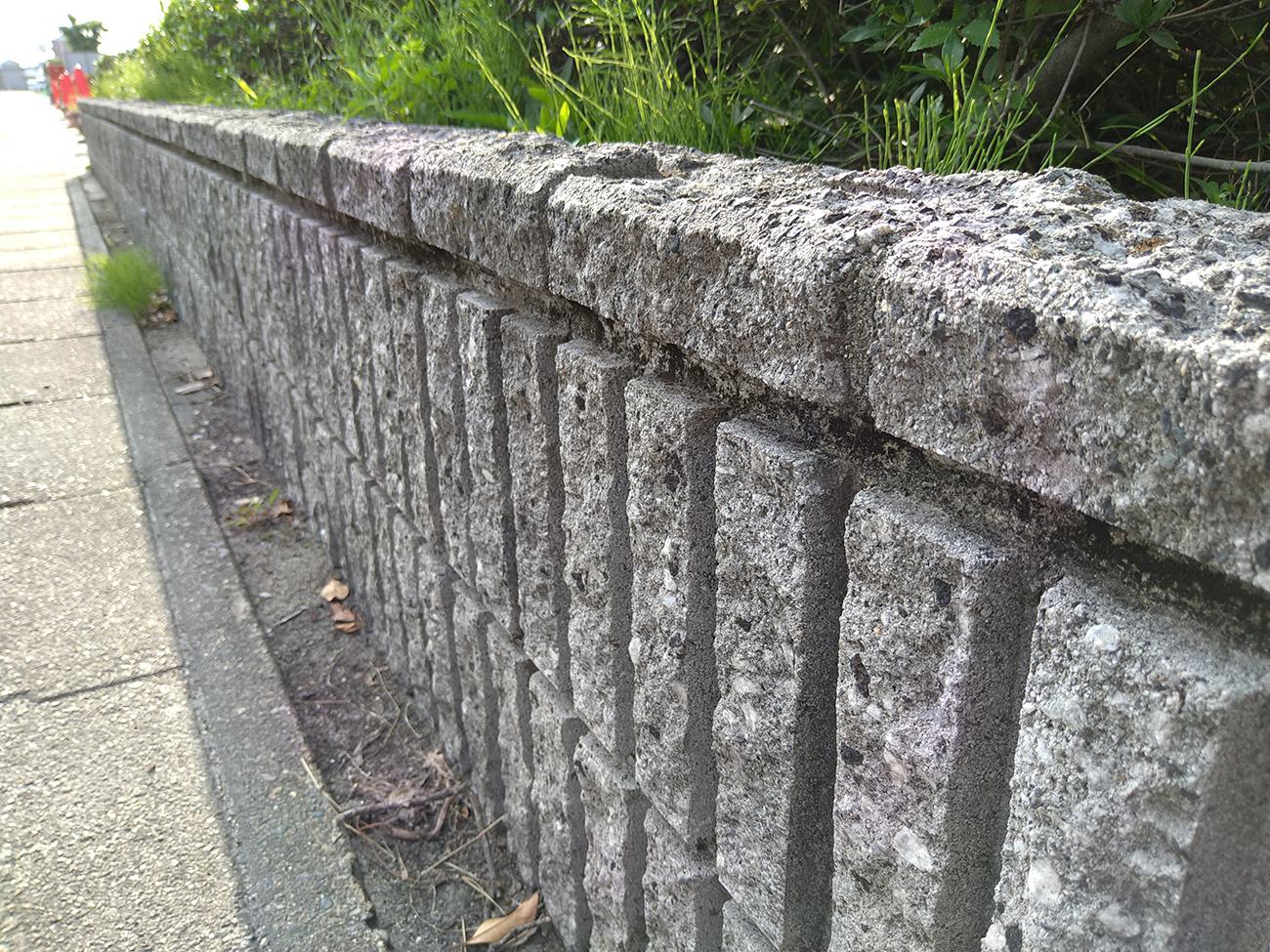 Xperia 10 IIで撮影した石