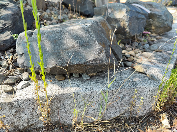 広角カメラで撮影した岩